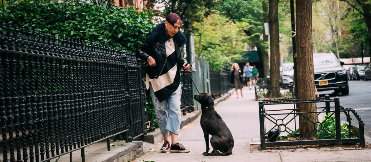 Brand Photography   Elisabeth Weiss from Dog Relations NYC   Hiilite Marketing