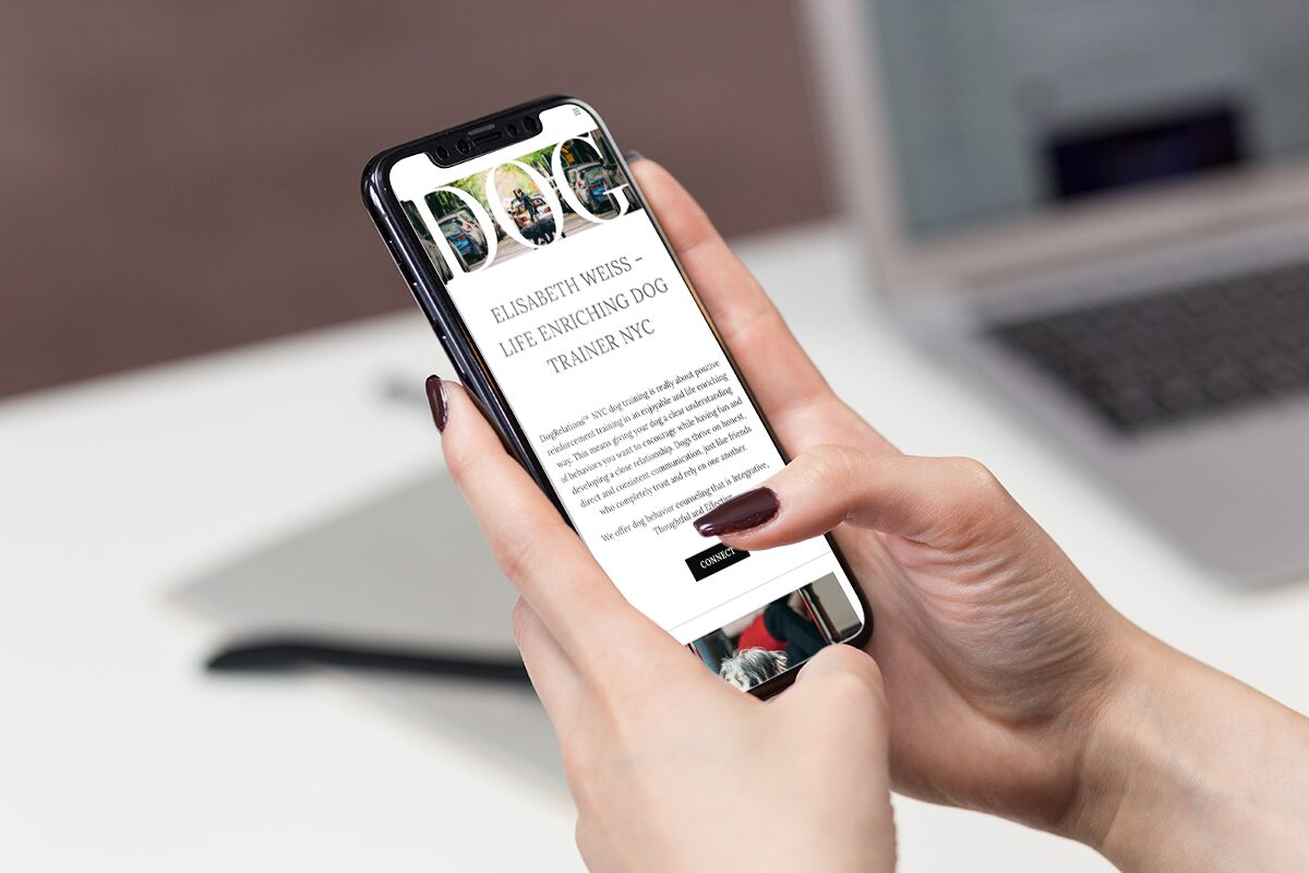 Mobile website design by Hiilite marketing for Dog Relations NYC